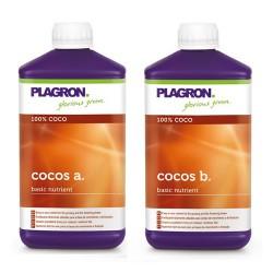 Coco A&B