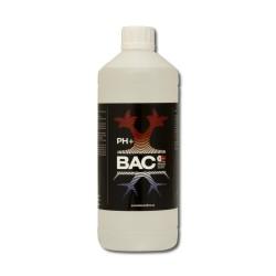 pH+ (BAC)