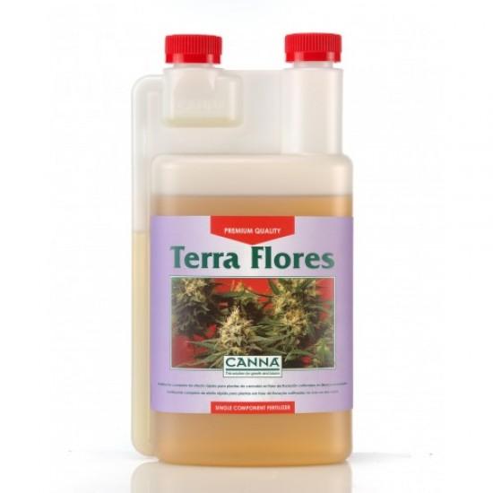 Terra Flores Canna