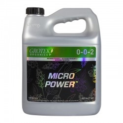 Micro-Power